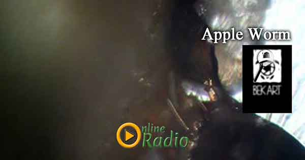 www.onlineradio.am onlineradio.am onlineradio online radio bek art macro studio apple worm