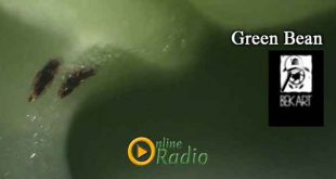 www.onlineradio.am onlineradio.am onlineradio online radio bek art macro studio green bean