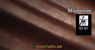 www.onlineradio.am onlineradio.am onlineradio online radio bek art macro studio mushroom