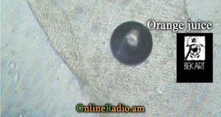 www.onlineradio.am onlineradio.am onlineradio online radio bek art macro studio orange juice